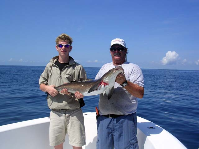 A nice sized Cobia caught while deep sea fishing aboard the Goin Off out of Port Canaveral near Cocoa Beach