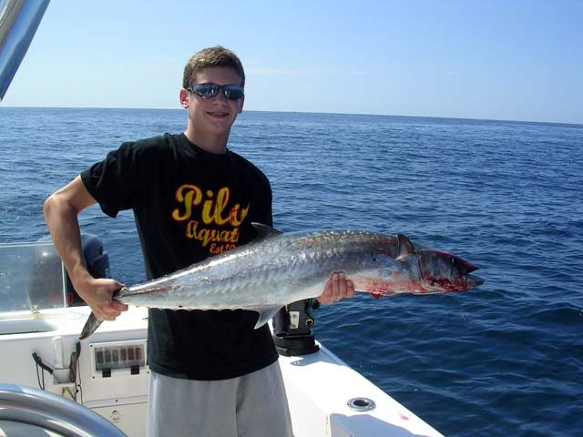 Catching big Kingfish is common aboard the Goin Off out of Port Canaveral near Cocoa Beach